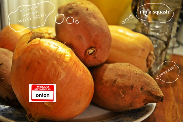 butternut_squash_onions_yams_photo